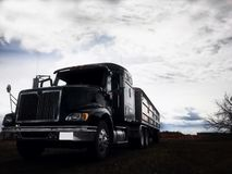 Looming grain truck and trailer royalty free stock photography