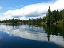 Loon jezioro odbijający Zdjęcia Royalty Free