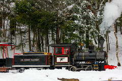 Loon Mountain train. Stock Images