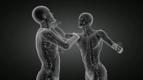 Loop Boxing men x-ray scan stock video