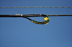 Loop on electrical wire line Stock Image