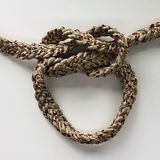 Loop knot rope string. Ship`s rope?nReliable sea knot Stock Photography