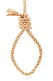 A loop of rope. A noose of rope on white background Royalty Free Stock Image