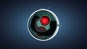 Loop rotate cell division illustration Royalty Free Stock Image