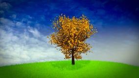 Loopable árbol de cuatro estaciones stock de ilustración