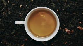 Loopable Cinemagraph av koppen av grönt te bland torra teblad Top beskådar arkivfilmer