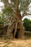 Looppas van oude Cambodjaanse tempel Royalty-vrije Stock Foto's