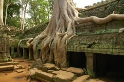 Looppas van oude Cambodjaanse tempel Stock Afbeelding