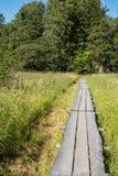 Loopplanken aan een eiland Stock Foto