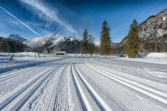 She loops at Pertisau, Karwendeltal at the Alps in Tyrol, Austria Stock Photography