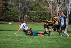 Loose Ball Scramble Royalty Free Stock Images
