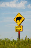 Loose bison sign on prairie preserve Stock Images