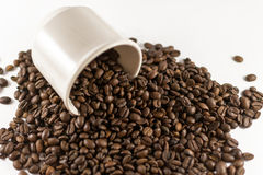 Loose Coffee Beans on White Background. Closeup of many coffee beans spilling out of a cup on white Stock Images