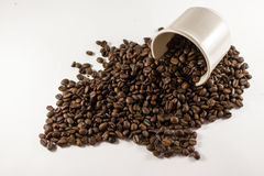 Loose Coffee Beans on White Background. Closeup of many coffee beans spilling out of a cup on white card with copyspace Royalty Free Stock Photos