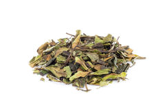 Loose green leaves of white tea bai mu dan Royalty Free Stock Photos