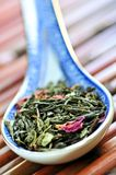 Loose green tea Stock Images