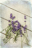 Loose lavender twigs on grunge table Stock Photo