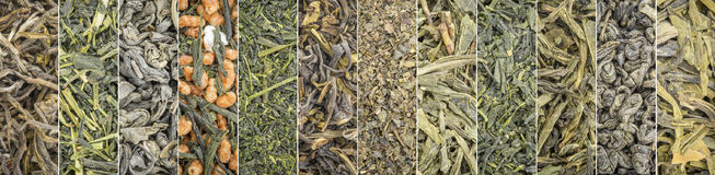 Loose leaf green tea collection banner. Set of Chinese and Japanese green tea - a collage of 12 macro background shots of loose leaves Stock Images