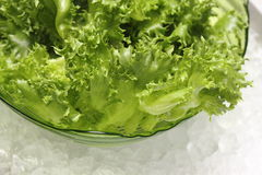 Loose leaf lettuce in glass bowl Royalty Free Stock Photos