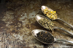 Loose Leaf Tea with Copy Space Stock Images