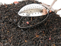 Loose leaf tea with infuser Stock Photos