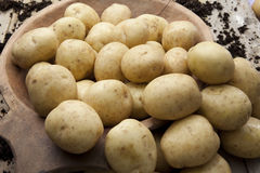 Loose potatoes Royalty Free Stock Image