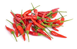 Loose Red Chili Peppers Stock Photography