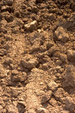 Loose soil of dried-up field Stock Photo