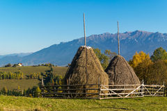Loose stacked hay in Romania Royalty Free Stock Image