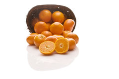Loose Tangerines. Tangerines spilling out of a basket isolated on a white background with drop shadow Stock Image
