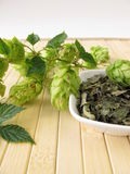 Loose tea with hops Royalty Free Stock Photography