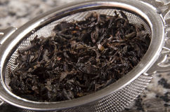 Loose tea in a tea strainer Royalty Free Stock Image