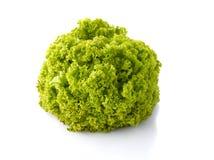 Loosehead lettuce Royalty Free Stock Photos