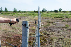 Loosen electric fence. Loosen the handle at an electric fence in a farmland Stock Images