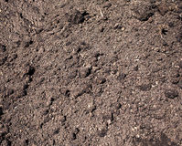 Loosened soil ready for planting crops as background. Photo closeup Stock Photography