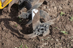 Loosens the soil cultivator close-up Stock Image