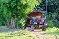 Farmer`s car under the tree in nature. royalty free stock image
