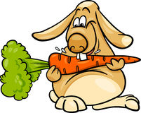 Lop rabbit with carrot cartoon Royalty Free Stock Images