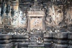 Lopburi Thailand Stockbilder