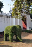 Lopburi, Thailand: Elephant Topiary and Palace Walls Royalty Free Stock Image
