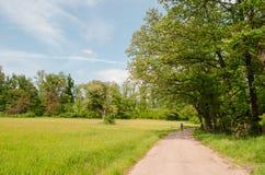 Lopen in de stille aard van de lente is onschatbaar royalty-vrije stock foto