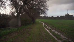 Lopend in de regen, gecultiveerd gebied stock video