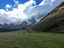 Lopend door een open vallei langs de Salkantay-Sleep op de manier aan Machu Picchu, Peru Mooi royalty-vrije stock afbeeldingen