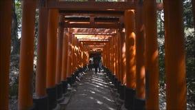 Lopend onder de toriideuren van het beroemde heiligdom van Fushimi Inari in Kyoto, Japan stock footage
