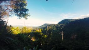 Lopend op een sleep langs palmen en boswildernis op Konijneiland, Kaoh Tonsay, Kambodja stock videobeelden