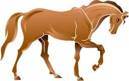 Lopend paard Royalty-vrije Stock Afbeeldingen