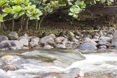Lopend water dichtbij het strand van Hawaï Stock Foto's