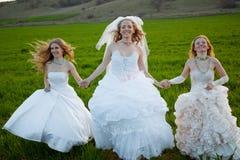 Lopende bruiden Royalty-vrije Stock Foto