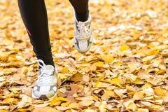 Lopende voeten in de herfst royalty-vrije stock afbeeldingen