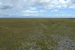 Lopin de terre privé clôturé en Tierra del Fuego Image stock